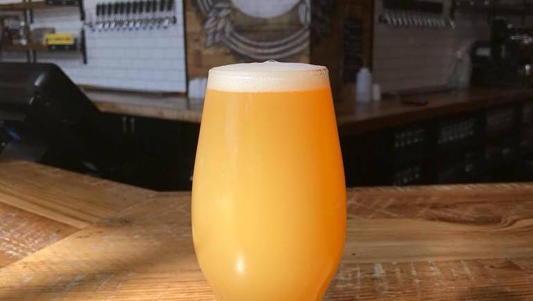 Popsicle Toes IPA Release